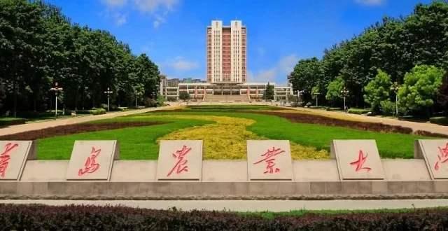2020年青岛农业大学成人高考招生简章